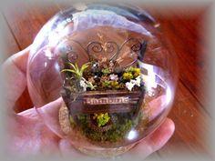 Alambre y Madera silla jardinera completa ♪ cúpula de cristal palma miniatura suculenta imagen | de bambini miniatura habitación Doll House Interior