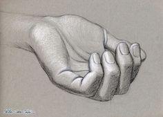 hand drawings by tonal