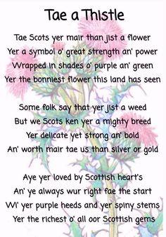 30 Lovely Scots Poems for Kids Scottish Poems, Scottish Gaelic, Scottish Thistle, Scottish Highlands, Scottish Sayings, Scottish Flowers, Scottish Clans, Scotland History, Scottish Recipes
