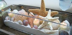 Beach Style Centerpiece with Candles Starfish and Sea Shells