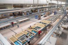 Moderne Produktionsanlage bei Hartl Haus Montage, Modern, Carpentry, Trendy Tree