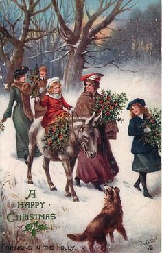 """""""Bringing in the holly"""" ~ 1906"""