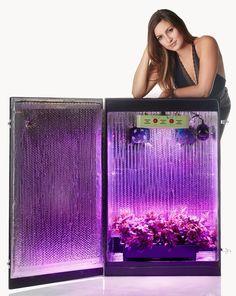 Grandma's Secret Garden Hydroponics Grow Box with LED Grow Lights - I Love Growing Marijuana
