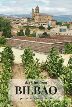 Tips for day trips from Bilbao - Rioja region, Spain