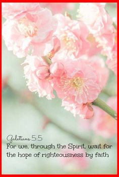 Galatians 5:5 For we through the Spirit wait for the hope of righteousness by faith.  #Dailybibleverse