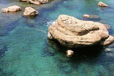 uShaka Marine World Eco System, Sea World, Nature, Photography, Travel, Outdoor, Outdoors, Naturaleza, Photograph