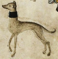 """It's About Time: Dog Days of Summer - Over 40 Dogs of the Middle Ages """"rescued"""" from illuminations, tapestries, & even playing cards..."""