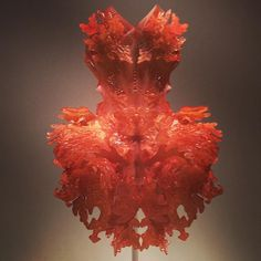 Kind of obsessed with Iris van Herpen now. #ManusxMachina #themet #fashion #3Dprinting by calebinnyc