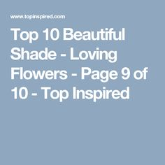 Top 10 Beautiful Shade - Loving Flowers - Page 9 of 10 - Top Inspired