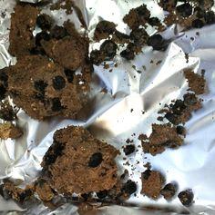 Feijões-fava de 10 mil anos atrás são descobertos na região da Galiléia em Israel. Escavações arqueológicas no norte de Israel desenterraram as mais antigas sementes de feijão-fava do mundo. Segundo os arqueólogos, este resultado indica que o homem pré-histórico viveu no sul do Oriente Médio há 10 mil anos e consumia leguminosas na sua dieta.…