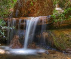 golden cascade waterfall...  big basin redwoods state park, california