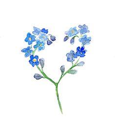 Flower Watercolor Painting - Forget me not flower - Fine Art Print - Zen Art  Flower illustration Home decor Blue Flower Heart love Painting