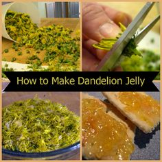 How to Make Dandelion Jelly - I wonder if it is bitter like the taste on your hands when you've been pulling dandelions? Anyone know?