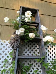 Garden ladder projects you can do! Audra DeGulis's old ladder with roses