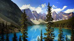 Bing Image Archive: Lac Moraine dans le parc national de Banff, Alberta, Canada (© Getty Images)(Bing France)