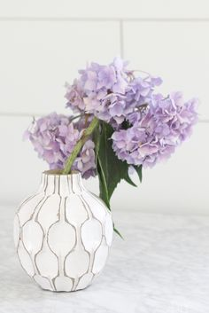 how-to-revive-droopy-hydrangeas