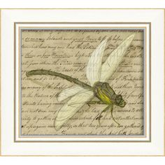 Blueprint Artwork Gray Dragonfly Framed Art | Wayfair