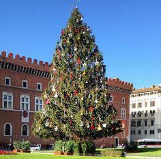 Piazza Venezia, christmas tree