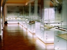 Lighted acrylic display cases with stand-off mounting hardware and printed acrylic wall panels