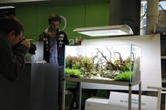 Taking a picture shot of an aquascape Reportage Meeting Invertébré Paris Fev 2012