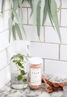 Eucalyptus Shower Sp