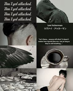 Levi Ackerman || aesthetic