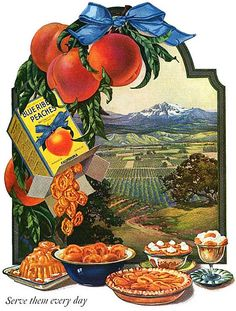 A beautifully illustrated ad from 1921 for Blue Ribbon Peaches. #fruit #peaches #food #ad #vintage #1920s