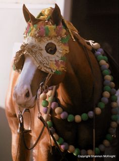 even horses join in the Mardi Gras celebrations Horse Halloween Costumes, Mardi Gras Costumes, All Animals Pictures, Horse Mask, New Orleans Mardi Gras, Mardi Gras Parade, American Quarter Horse, Pet Odors, Beautiful Horses