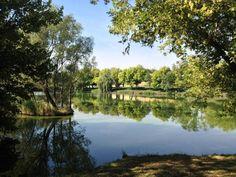 Zoltán és Diana Horgásztó és Pihenőpark, Göböljárás-puszta, Alcsútdoboz