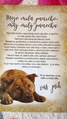 Dog Quotes, Qoutes, Heart And Mind, Just Me, Be Yourself Quotes, Motto, Cool Words, Animals And Pets, Inspirational Quotes