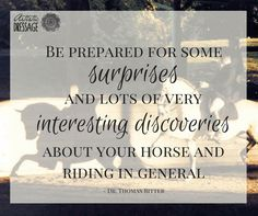 """Be prepared for some surprised and lots of very interesting discoveries about your horse and riding in general."" - Thomas Ritter"