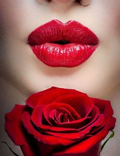 Luscious red lips and stunning red rose. Beautiful Lips, Beautiful Flowers, Simply Red, Foto Art, My Funny Valentine, Valentines, Lip Art, Shades Of Red, Red Lipsticks