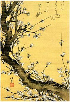 Katsushika Hokusai Flowering Plum Tree Art Poster Print Prints at AllPosters.com