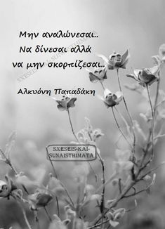 Greek Quotes, Slogan, Movies, Movie Posters, Instagram, Film Poster, Films, Popcorn Posters, Film Posters