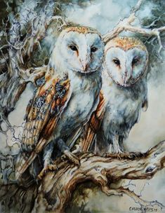 Oil painting by Cheryl Van Dyk. Wildlife Art, Cheryl, Owls, Van, Bird, Artist, Painting, Animals, Animais