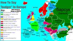 """maps-oe: """" How To Say 'badger' In Europe With Etymology Requested by """" Middle English, European Languages, Badger, Countries Of The World, Maps, Nerd Stuff, Sayings, Lego, Amazing"""