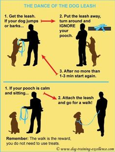 leash training your dog, dance of the dog leash, dog walking tips