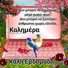 Beautiful Pink Roses, Good Morning Flowers, Good Week, Greek Quotes, Birthday Cards, Faith, Gifs, Friends, Instagram