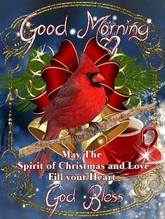 Christmas morning quotes, christmas bible verses, christmas greetings sayings quote, morning greetings quotes Christmas Morning Quotes, Christmas Bible Verses, Best Christmas Quotes, Morning Greetings Quotes, Good Morning Quotes, Christmas Greetings Quotes Love, Morning Thoughts, Night Quotes, Morning Messages