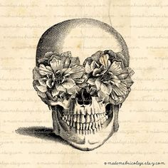 I have a things for skulls..