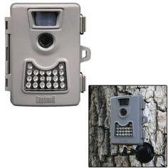 Bushnell Cordless Surveillance Camera http://minivideocam.com/wireless-camera-system-and-safety/
