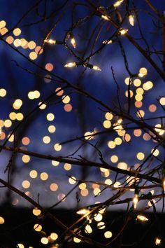 kvknowsherfun:ral-across-the-universe:Winter LightsI need more twinkle lights in my life Wallpaper Tumblr Lockscreen, Lit Wallpaper, Wallpaper Backgrounds, Winter Iphone Wallpaper, City Lights Wallpaper, Wallpaper Patterns, Aesthetic Backgrounds, Aesthetic Wallpapers, Tumblr Fairy Lights