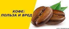 Речь пойдет о кофе, том самом, который мы готовы выпивать по много порций в рабочее время. Выясним вместе, в чем польза кофе для организма человека, может ли нанести вред. Также уточным – можно ли пить кофе беременным, маленьким деткам, и что дарит напиток мужскому организму. #кофе #кофейныйнапиток
