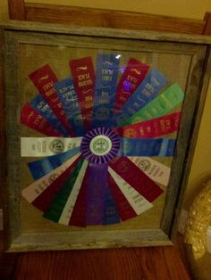 My boys ribbons from county fair Award Ribbon Display, Award Display, Display Ideas, County Fair Crafts, County Fair Projects, Ribbon Projects, Ribbon Crafts, Craft Projects