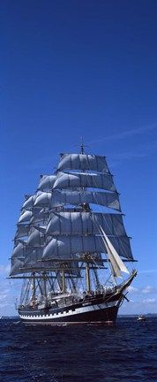 Tall ships race in the ocean, Baie De Douarnenez, Finistere, Brittany, France