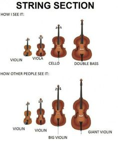 how i see it how other people see it string section