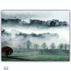 Foggy 🌁  #mountains #nature #landscapes #toptags #natureonly #naturewalk #naturegram #tree #naturephoto #like4follow #water #like4likes #landscape 📍 #travel #dusk #vacation #visiting  #instatravel #instagood #weather #travelling #tourism #tourist #travelgram #instalife #sky #cloud #fog #foggy #like4like