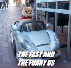 Fast and Furious