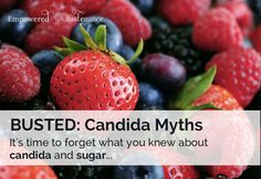 """busted candida myths Don't avoid fruit or follow """"Candida diet"""" Lauren from Empowered Sustenance"""