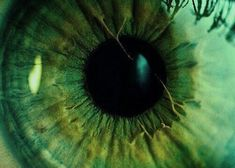 Image about beautiful in Green ? by Lost soul Image about beautiful in Green ? by Lost soul Dark Green Aesthetic, Aesthetic Colors, Aesthetic Pictures, Slytherin Aesthetic, Green Wallpaper, Character Aesthetic, Aesthetic Anime, Beautiful Eyes, Green Eyes